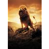 Lion_Paw